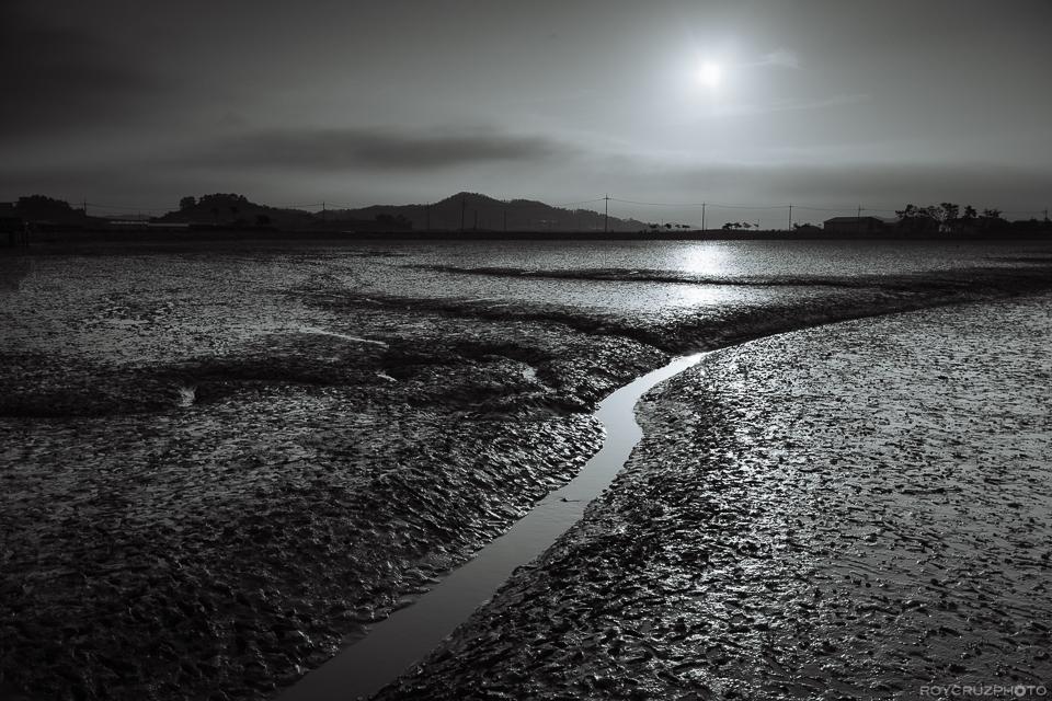 전라남도증도 Korea Landscape Photography-6