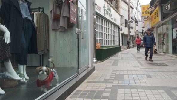 Fujifilm X-H1 – Pushing IBIS and a Taste of Eterna in Street